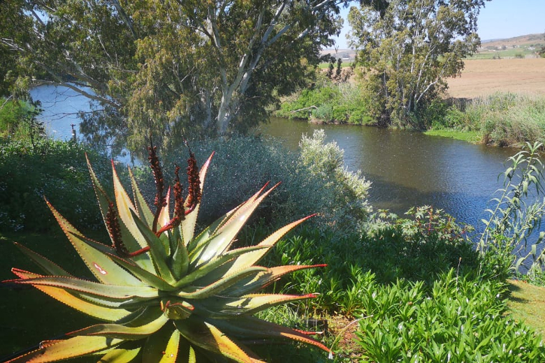 View from Blue Gum self catering cottage